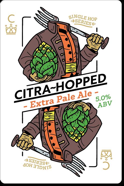 Citra Hopped Pale Ale