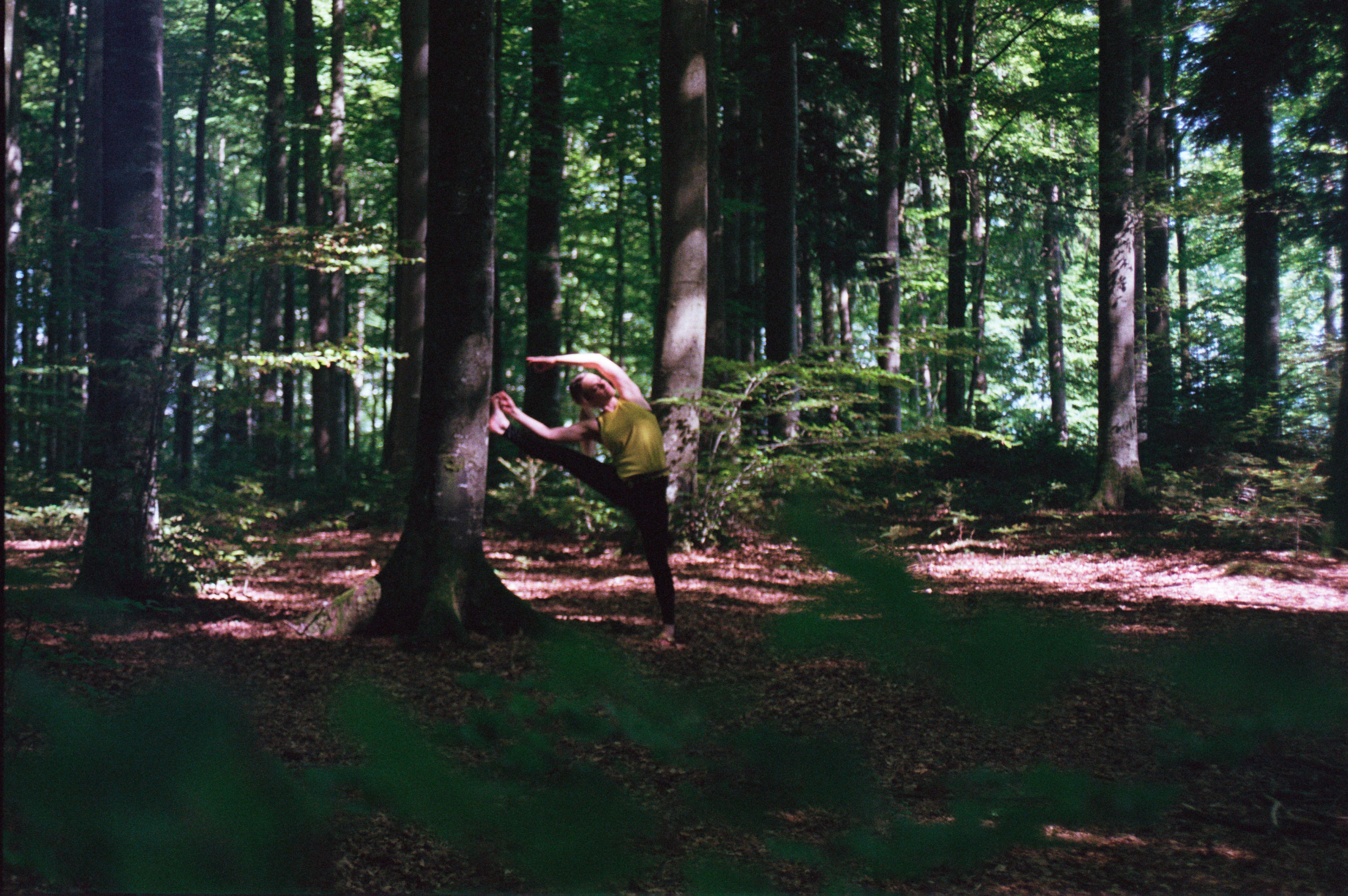 Wald Seitstrech III