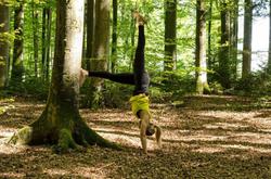 wald handstand