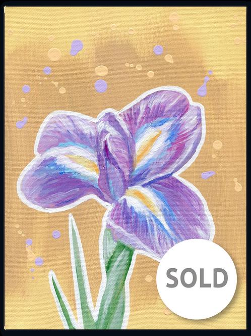 Schilderij Iris | ArtaFlora | PRETTY PASTEL collectie SOLD