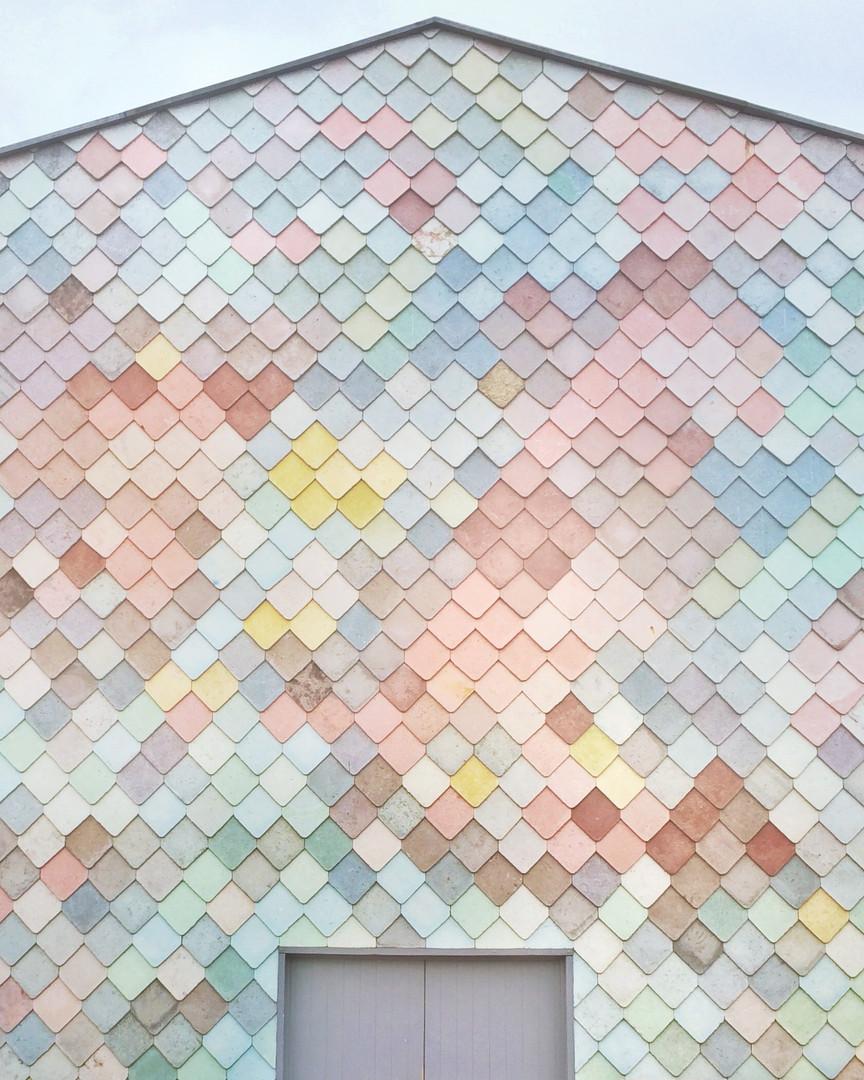 pexels-daria-shevtsova-1030889.jpg