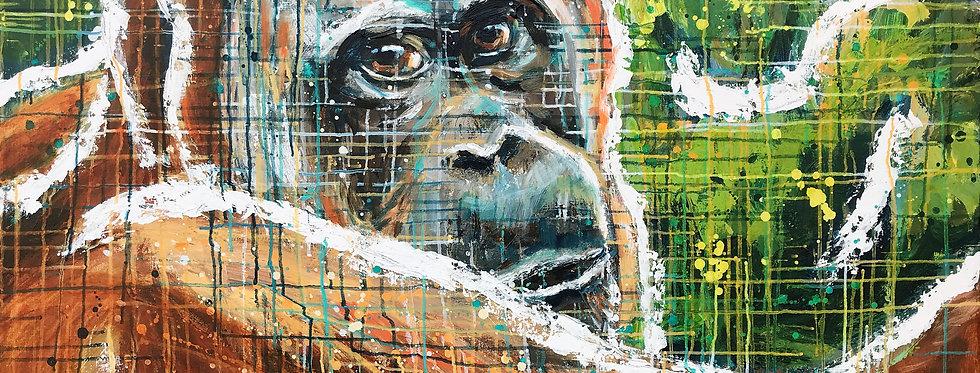 Schilderij Observe the Orangutan door Eva van den Hamsvoort