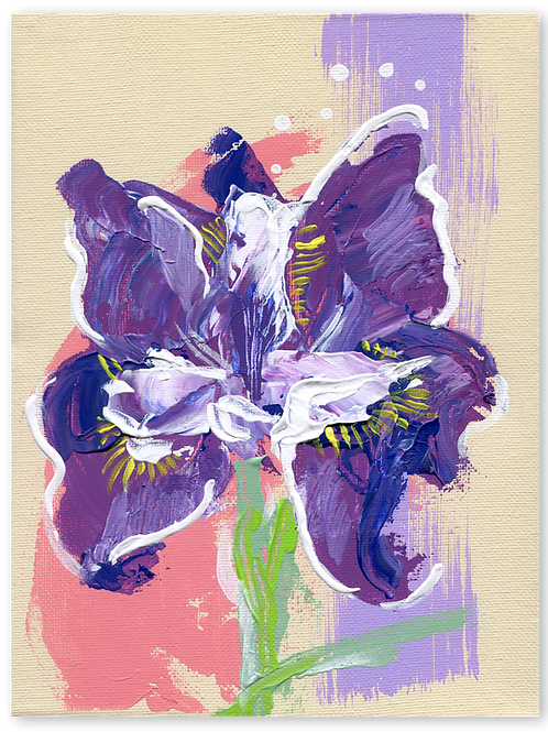 Siberische iris | Iris Sibirica Schilderij - van - een - iris