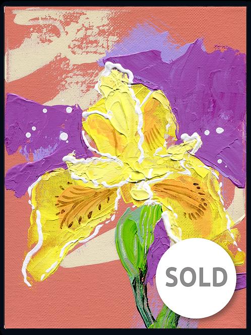 Kunstwerk - van - een - Gele - lis - Iris - Psuedacorus - bloemetje - kado - verkocht