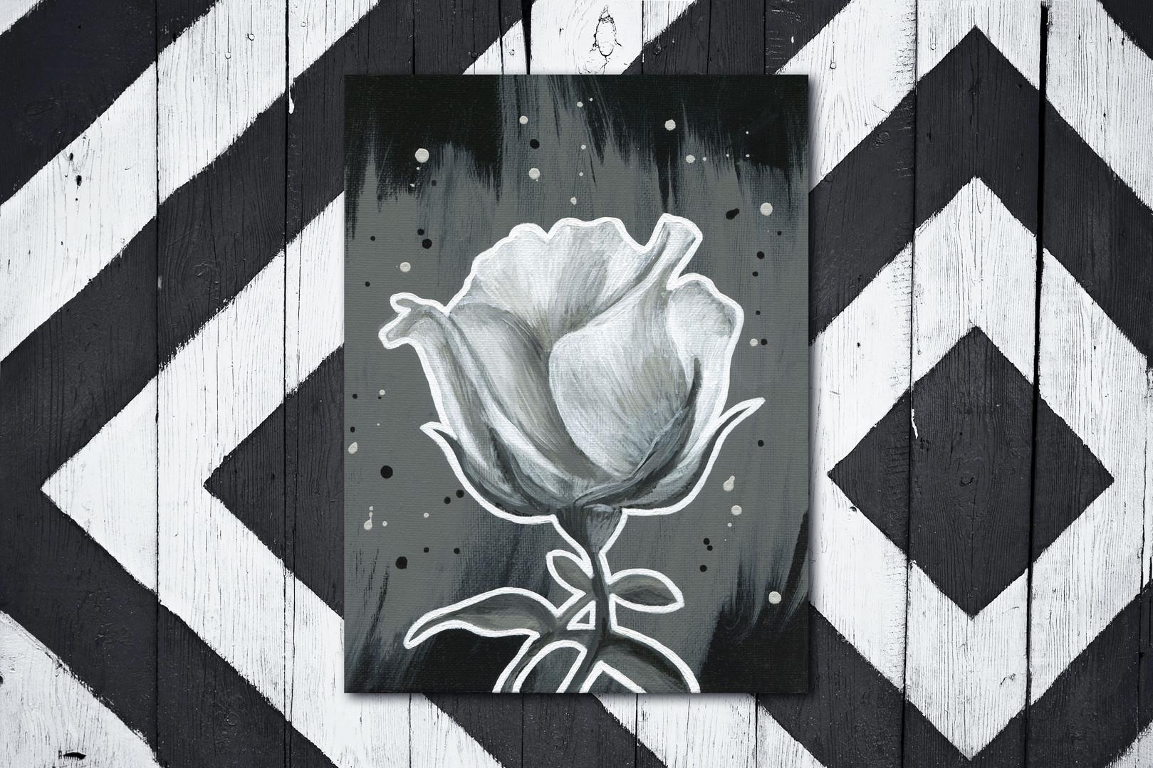roos met zwart wit muur.jpg