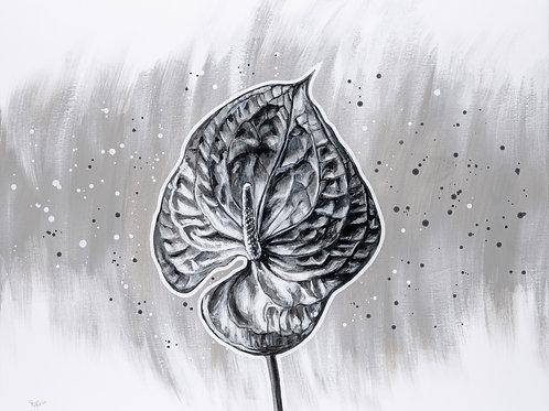 ArtaFlora schilderij van een anthurium in zwart wit tinten