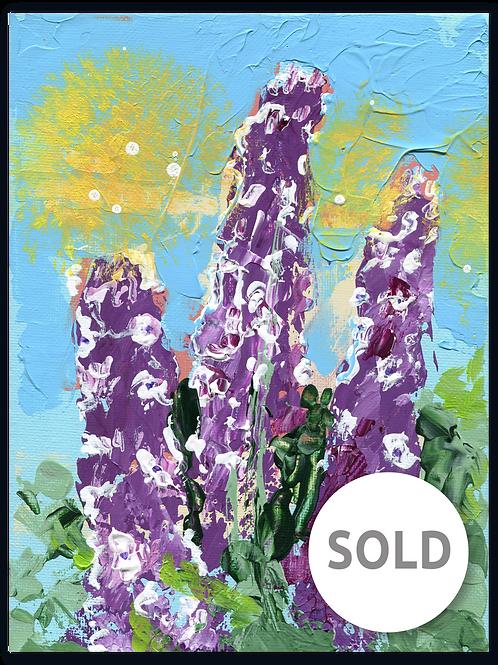Ridderspoor | Delphinium Astolat SOLD