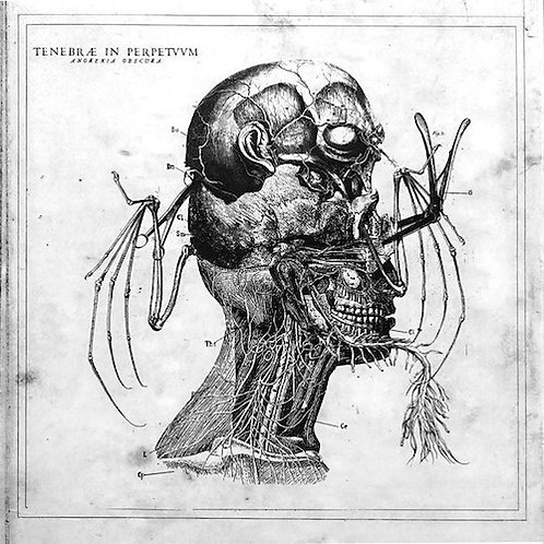 TENEBRAE IN PERPETVVM - Anorexia Obscura (LP)