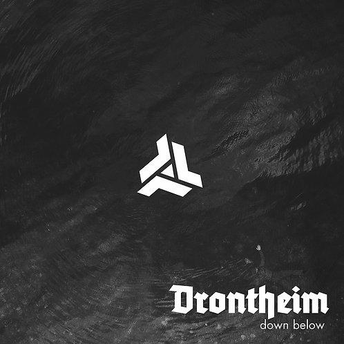 drontheim down below vinyl