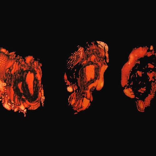 DEATHSPELL OMEGA - Kénôse (LP)