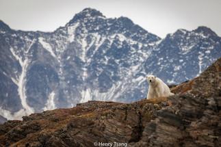 Svalbard-4281.jpg