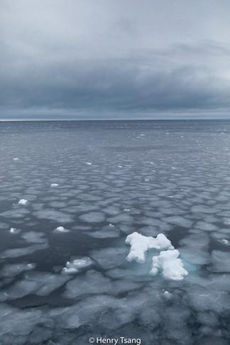 Svalbard-5446.jpg