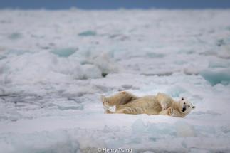 Svalbard-3036.jpg