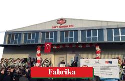 Kobak Fabrika