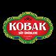kobak_logo-removebg-preview.png