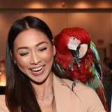Animal Expo Attendee and Parrot.JPG