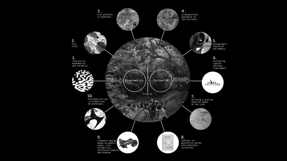 TEACHING METHODOLOGY for Design Studio based on biomimetics and tectonics
