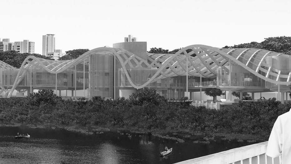 RIOTECA: A Biomorphic Public Library