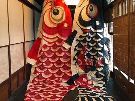 大きな和紙の鯉のぼり