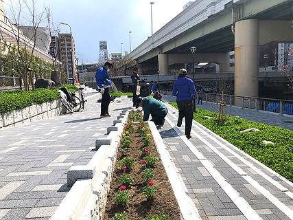 05新公園花植え.JPG
