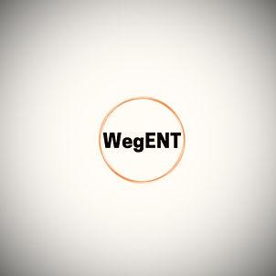 WegNet_edited.jpg