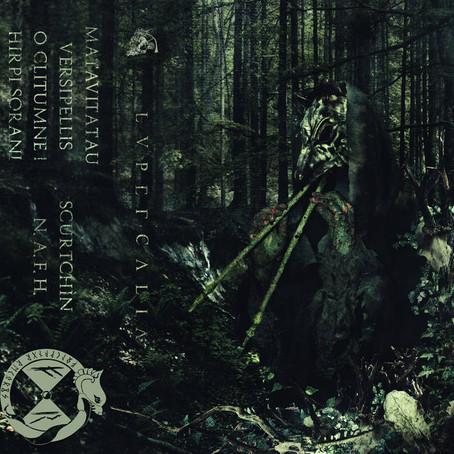 Selvans to release Lupercalia album on cassette April 21!