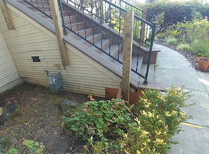 before picture for staircase.jpg
