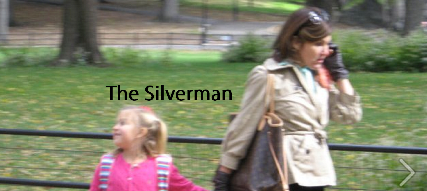 The Silverman home page with title