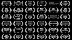 New Award logo page Danas Film Fest logos copy