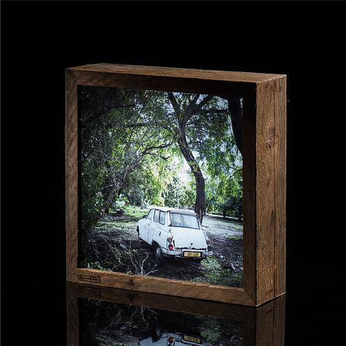Light Box > Car under a tree