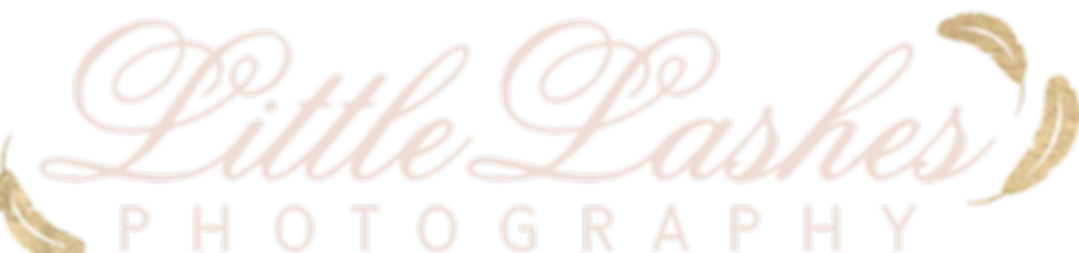 LightLogo_transparent (2).png