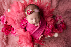temecula newborn photographer