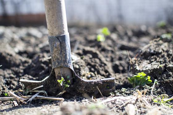 2020 - Year of Digging Deeper