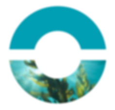Origin by Ocean algae logo.png