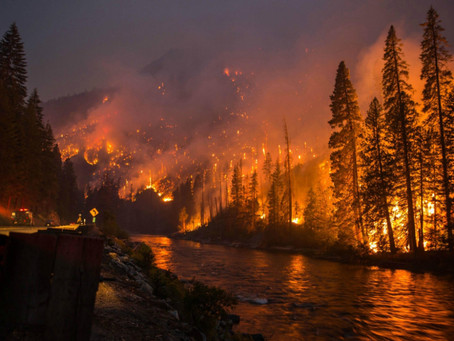 Wildfires in the Pacific Northwest