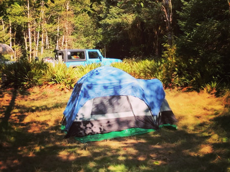 Camping in the Rainforest