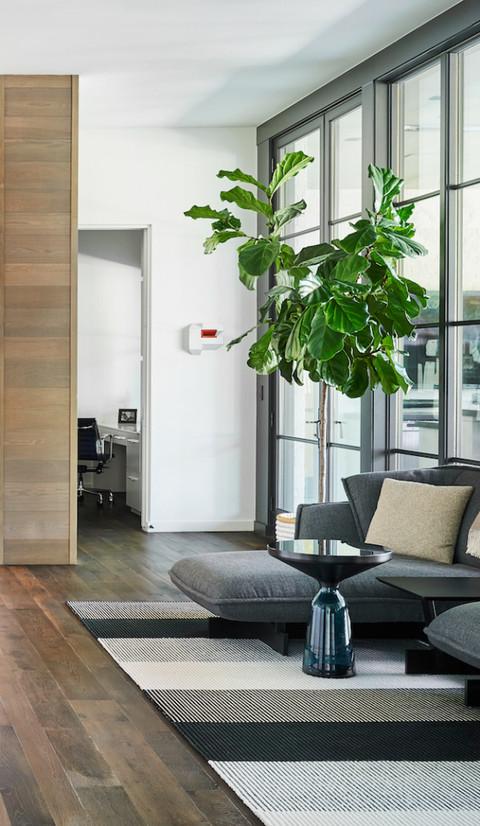 Architecte d'intérieur : Emily Summers Design Tapis fait-main CADENZA  © Stephen Karlisch