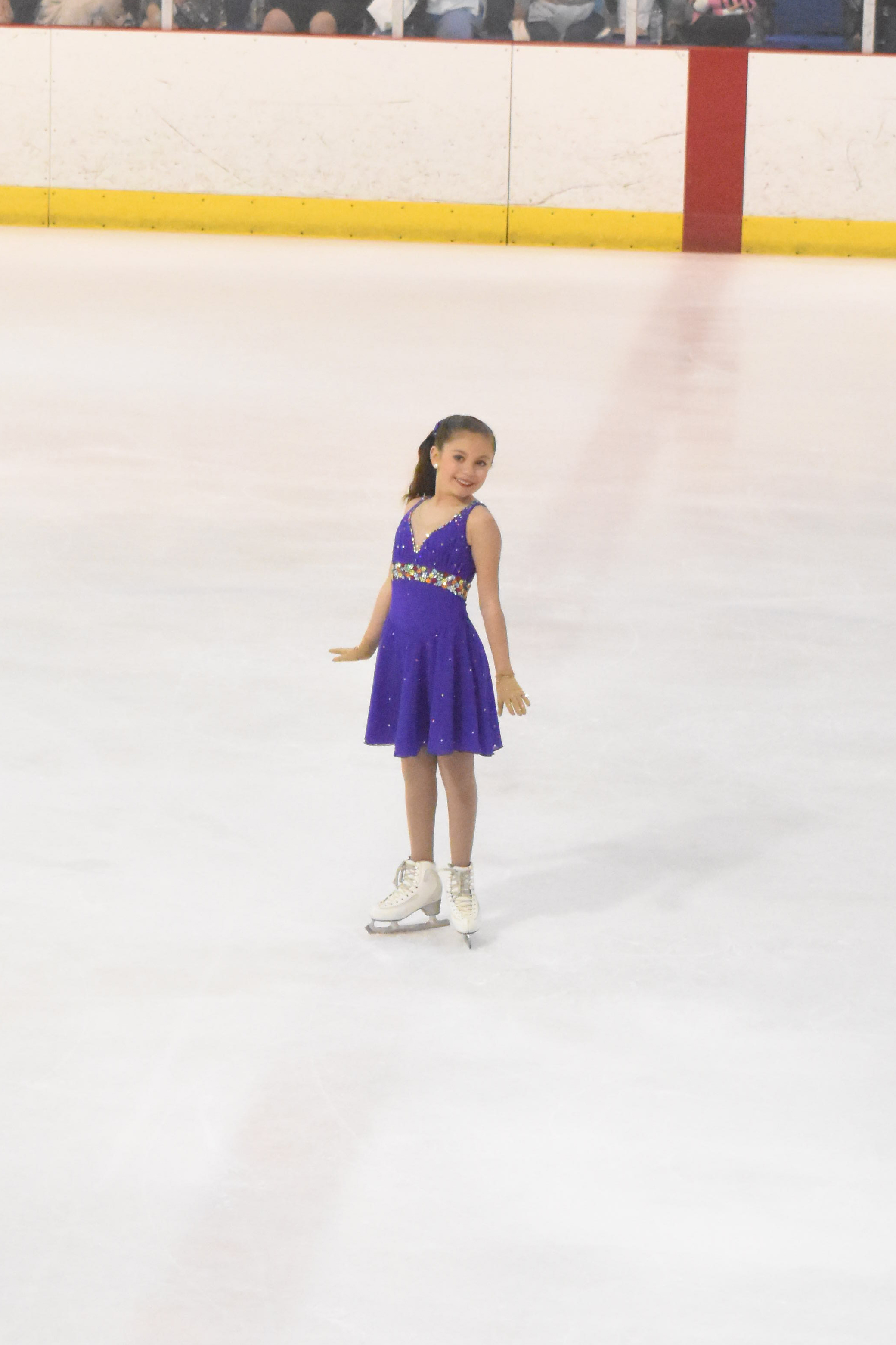 Ice Dancing Program
