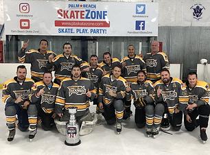 Adult Ice Hockey Leagues