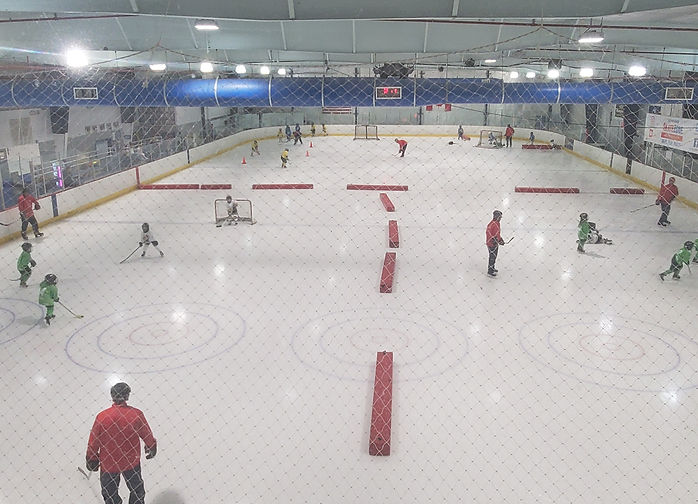 Ice Hockey Skills and Drills