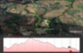 8km Trail Run Route Map.jpg