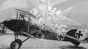 MS biplane.jpg