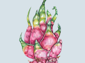Flora & Fruits