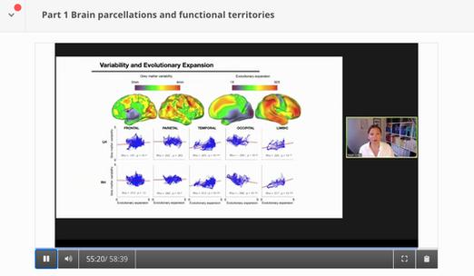 Organization of Human Brain Mapping, 2020 online