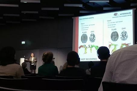 Organization of Human Brain Mapping, Geneva