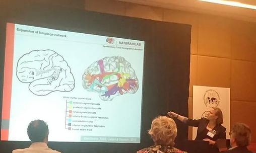 International Neuropsychology Society, London