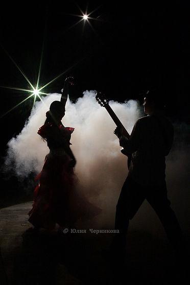 Елена Дружнова- творческие дуэты (5).JPG