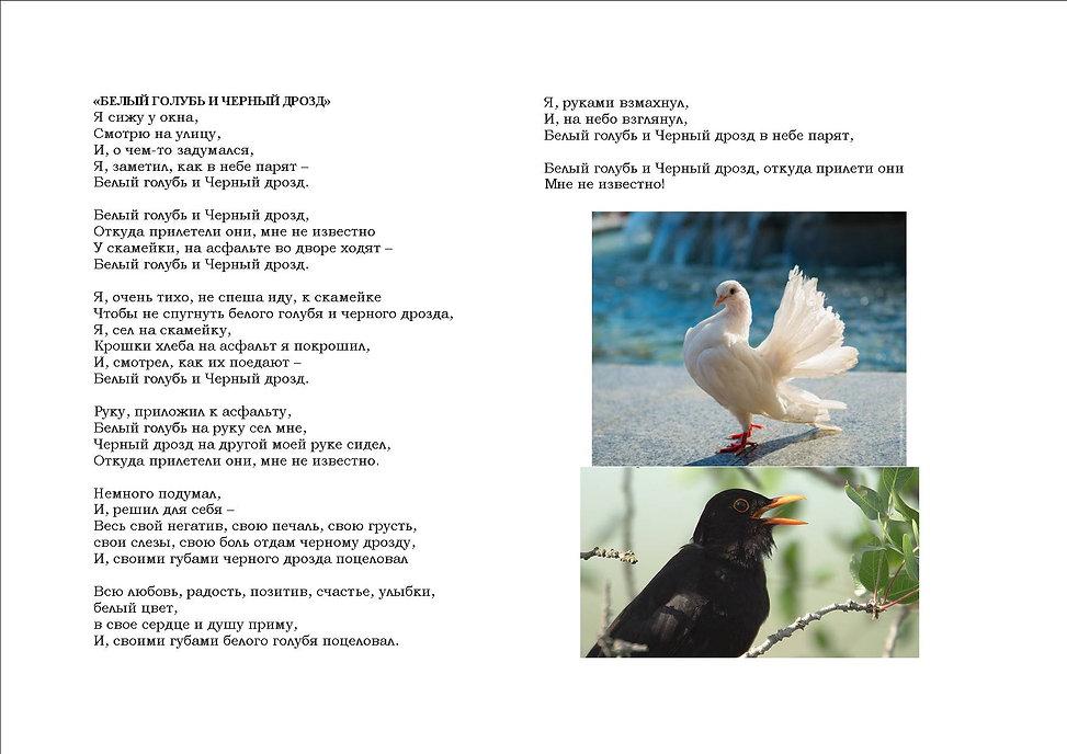 Белый голубь и Черный дрозд.jpg