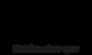 logo_festina_alta_en.png
