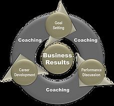 Performance management model.png